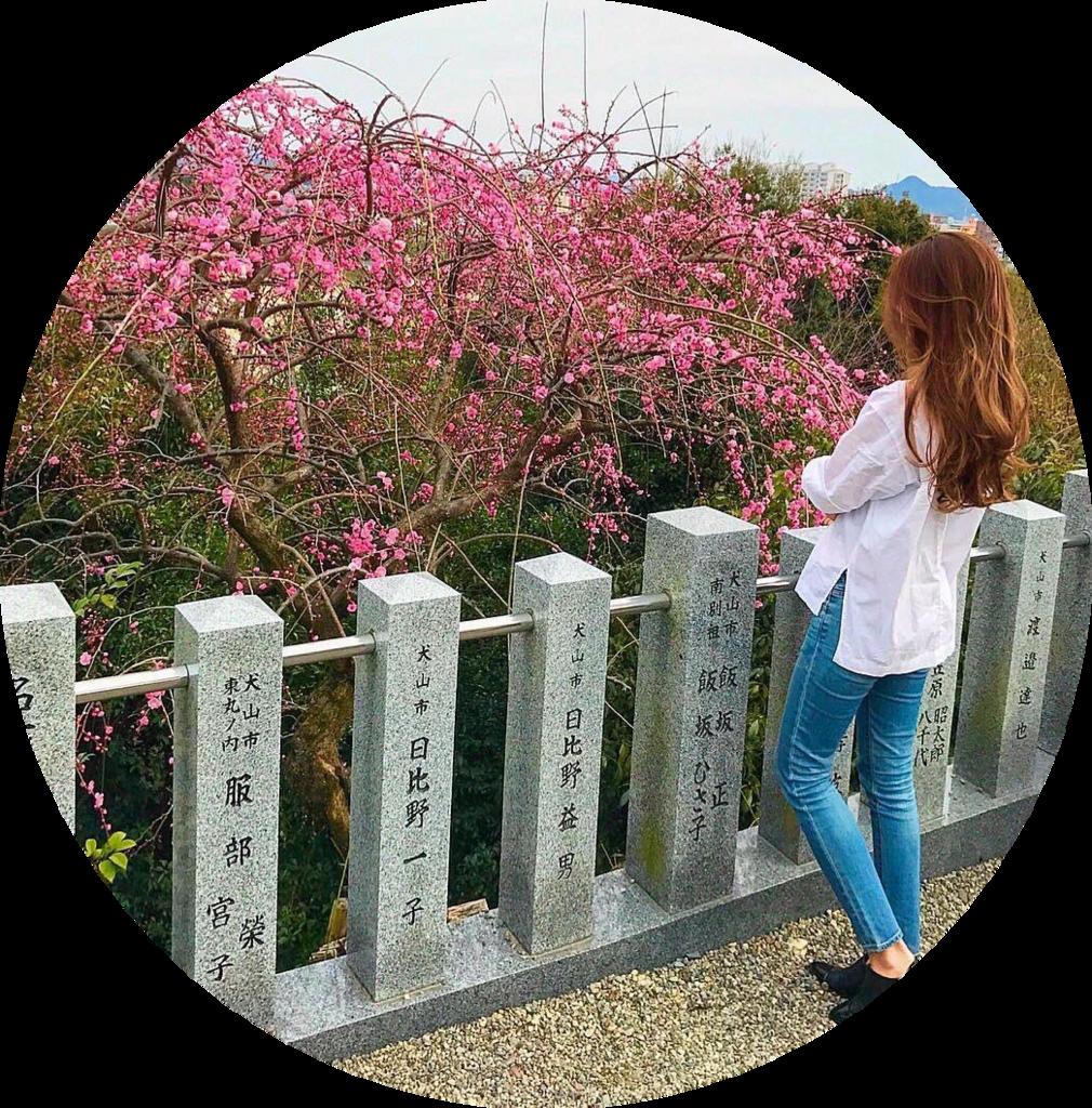 f:id:tenbaitomo:20171118160251p:plain
