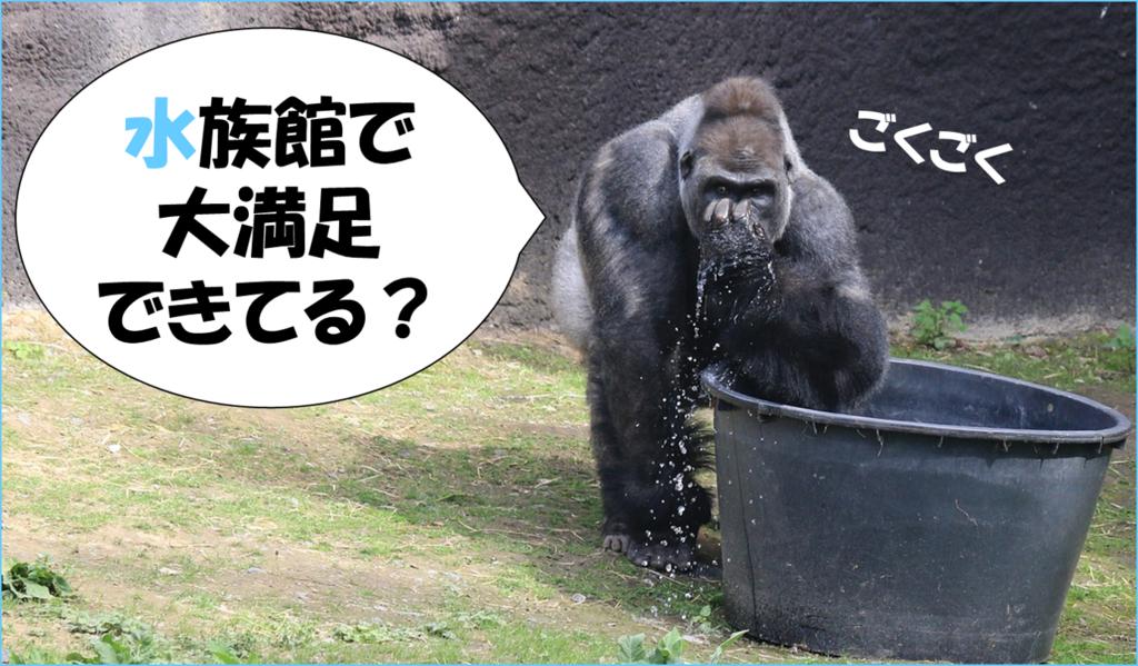 f:id:tender-gorilla:20180716100344p:plain