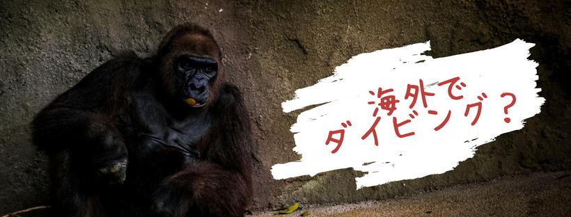 f:id:tender-gorilla:20180729190656j:plain