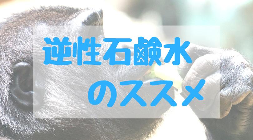 f:id:tender-gorilla:20180806215134j:plain