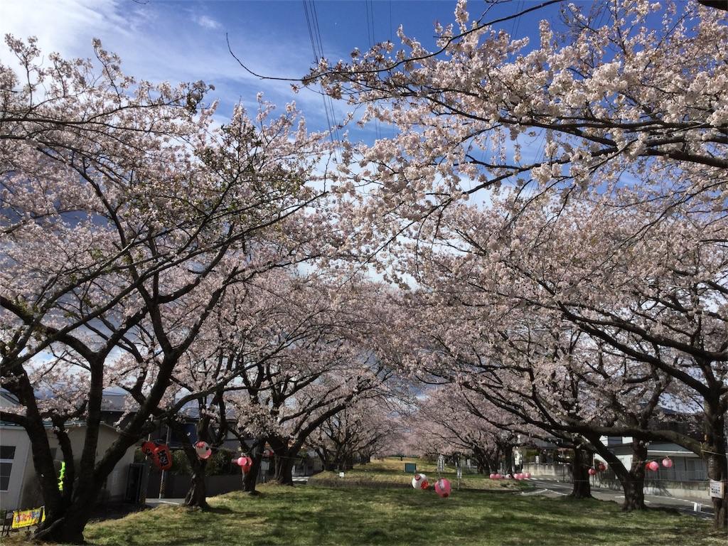 f:id:tender-higashikoyodai:20180416161924j:image