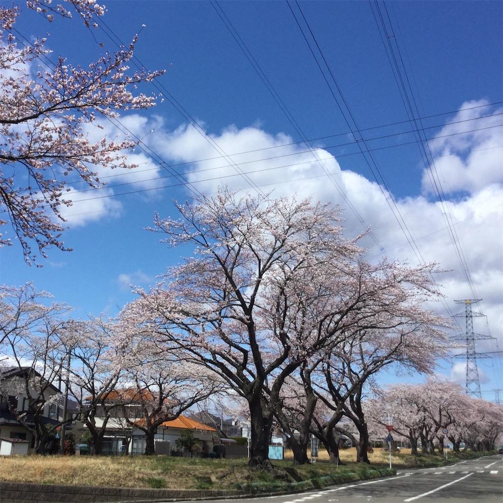f:id:tender-higashikoyodai:20190419183532j:image