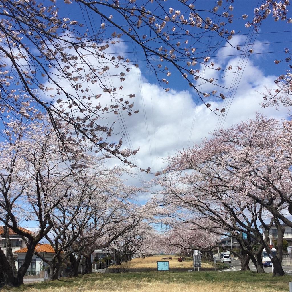 f:id:tender-higashikoyodai:20190419183551j:image