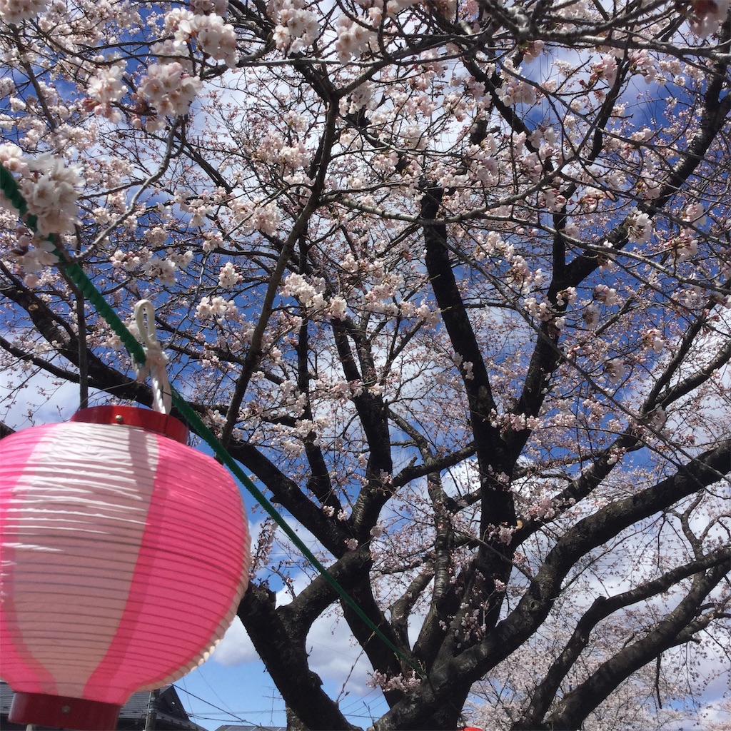 f:id:tender-higashikoyodai:20190419183608j:image