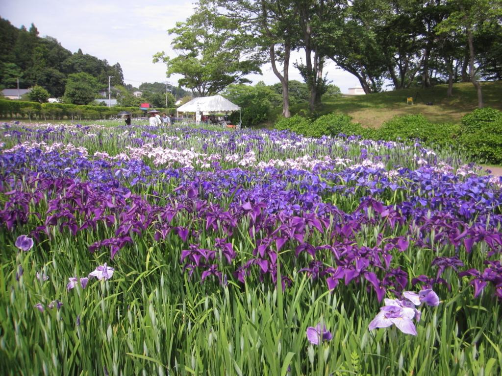 f:id:tender-tubamesawahigashi:20170624232911j:plain