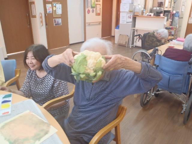 f:id:tender-yakata:20190618212546j:image