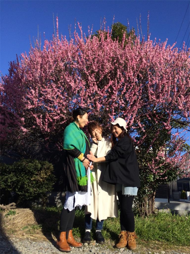梅の木の前で3人の女性が笑っている