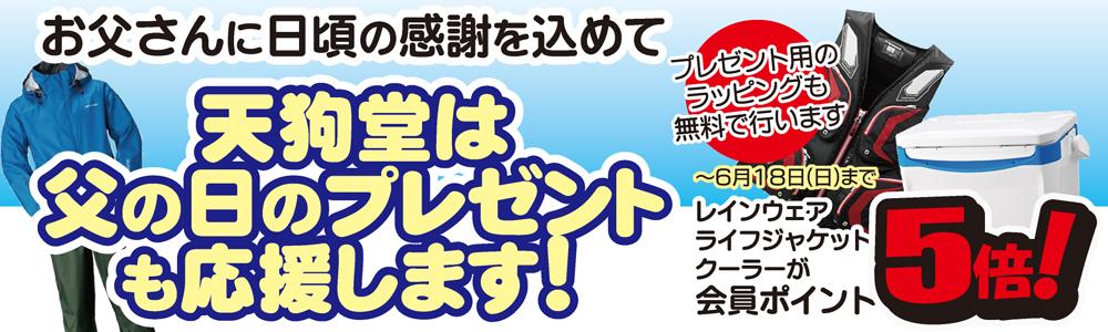 f:id:tengudo_staff:20170602103154j:plain