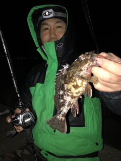 f:id:tengudo_staff:20190208140357j:plain