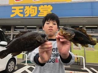f:id:tengudo_staff:20190318205452j:plain