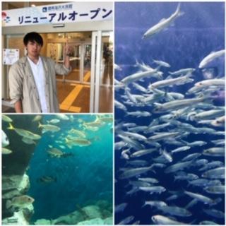 f:id:tengudo_staff:20190425224530j:plain