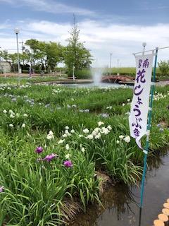f:id:tengudo_staff:20190601112311j:plain