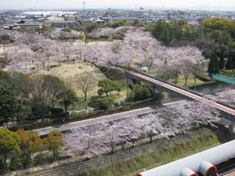 f:id:tengudo_staff:20200229181934p:plain