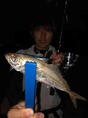 f:id:tengudo_staff:20201010162318j:plain
