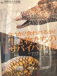 f:id:tengudo_staff:20210627185123j:plain