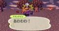 七面鳥(うい森)(去年)