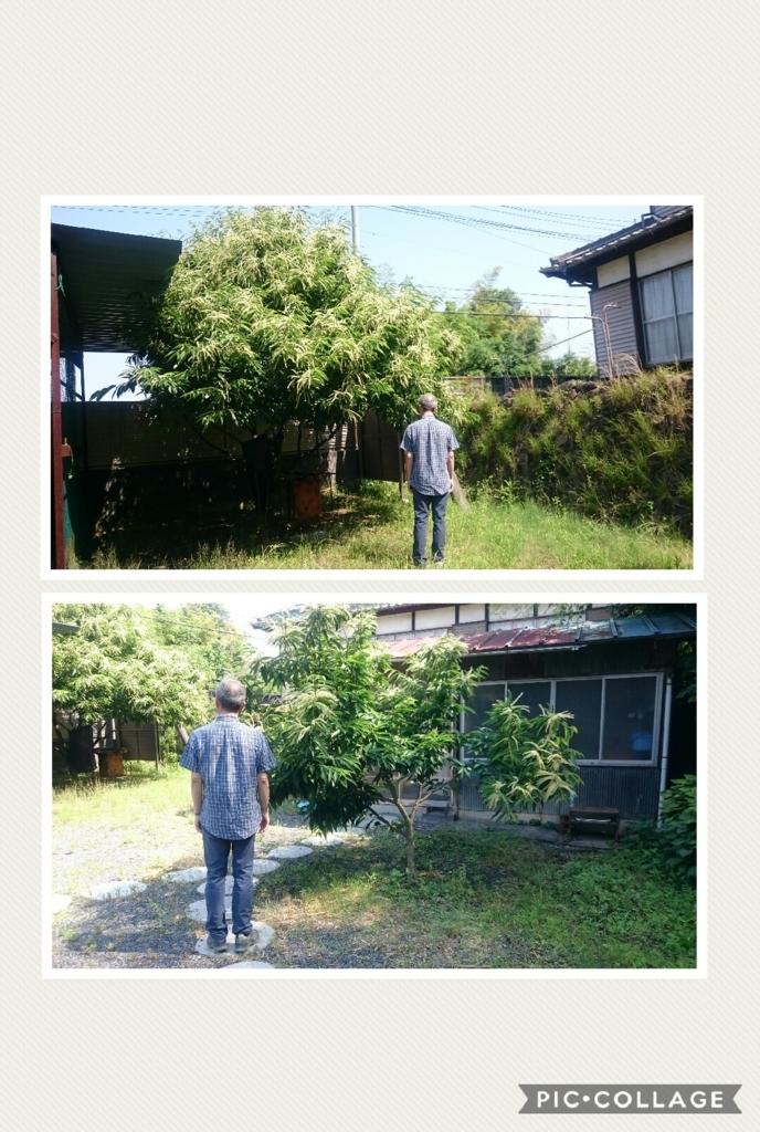 f:id:tenkai_kaiou:20170622152725j:plain