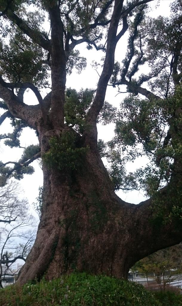 f:id:tenkai_kaiou:20171016090222j:plain
