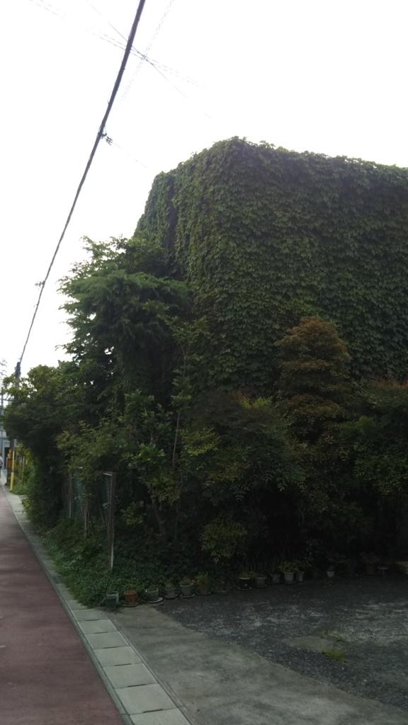 f:id:tenkai_kaiou:20180510155138j:plain