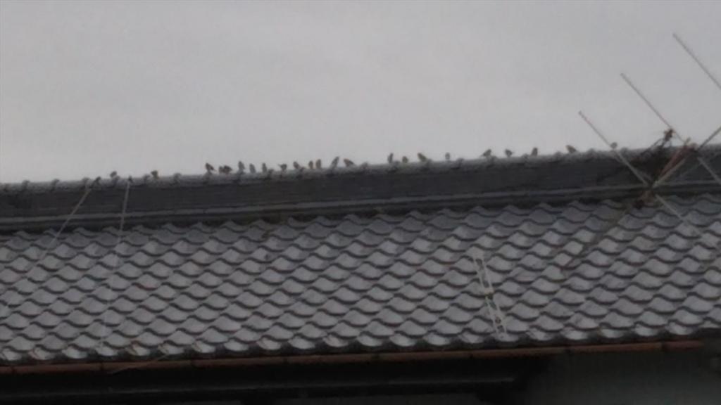 f:id:tenkai_kaiou:20181004130931j:plain