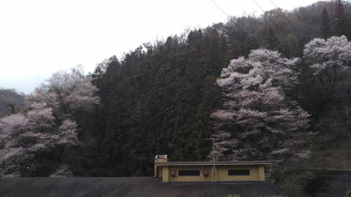 f:id:tenkai_kaiou:20190330132357j:plain