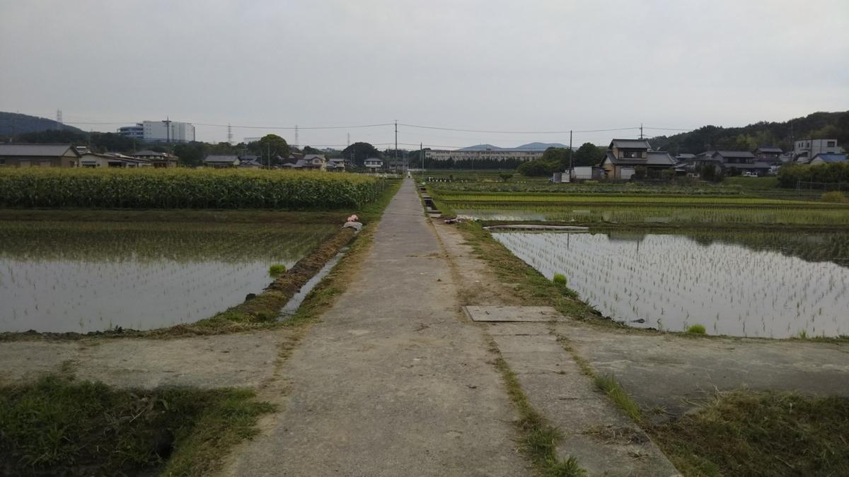 f:id:tenkai_kaiou:20190602164236j:plain