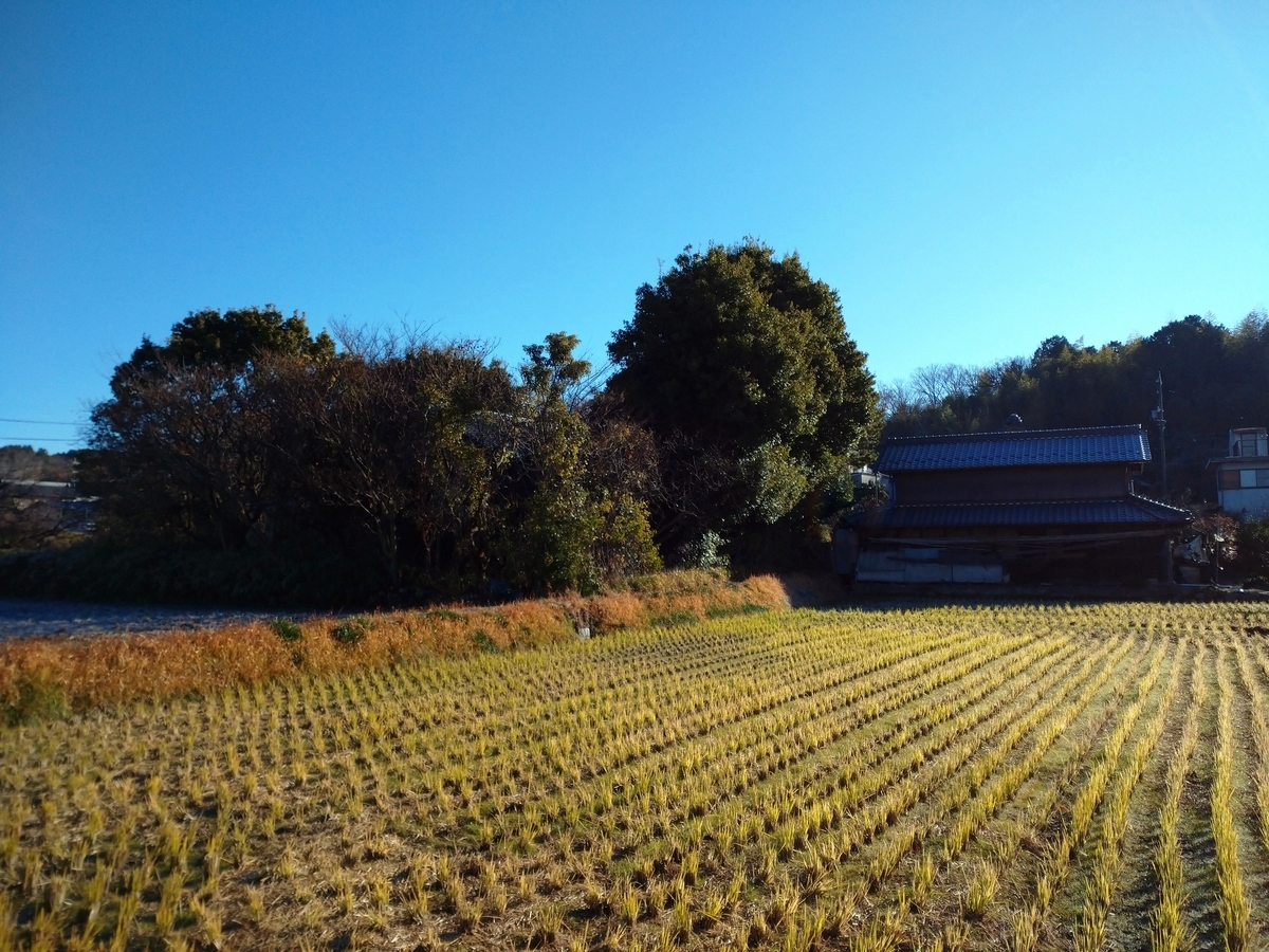 f:id:tenkai_kaiou:20201220095258j:plain