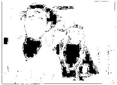 f:id:tennensui-77:20170802165927p:plain