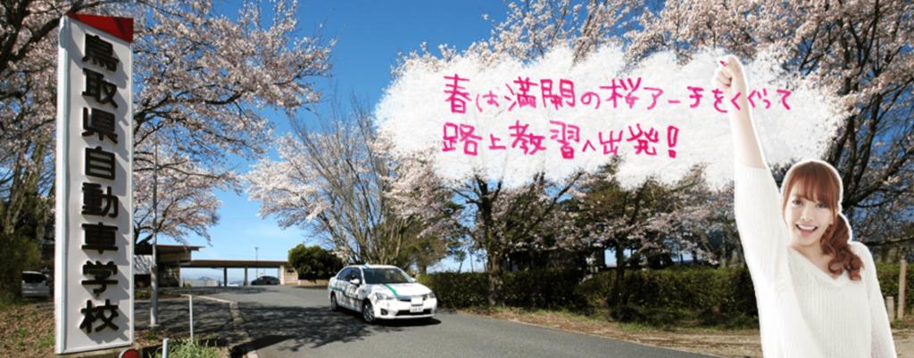 f:id:tennensui-77:20180110190011p:plain