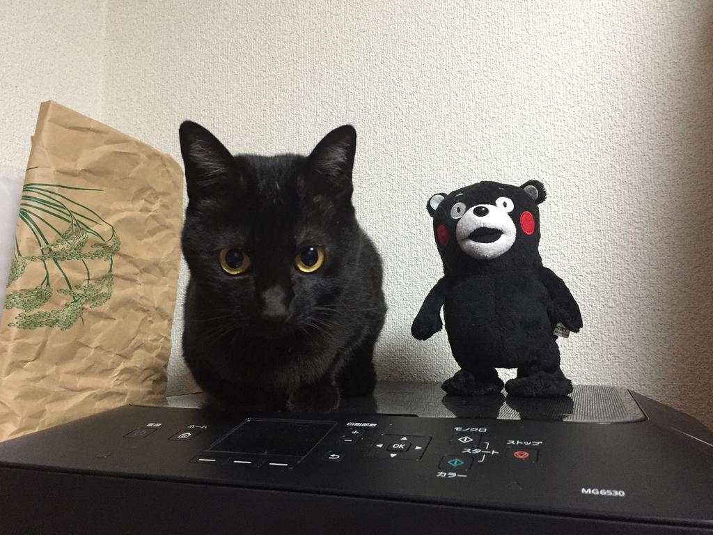 f:id:tenoyoru623:20181016113140j:plain