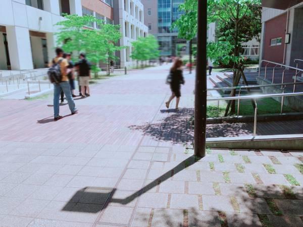 大阪大学のキャンパス