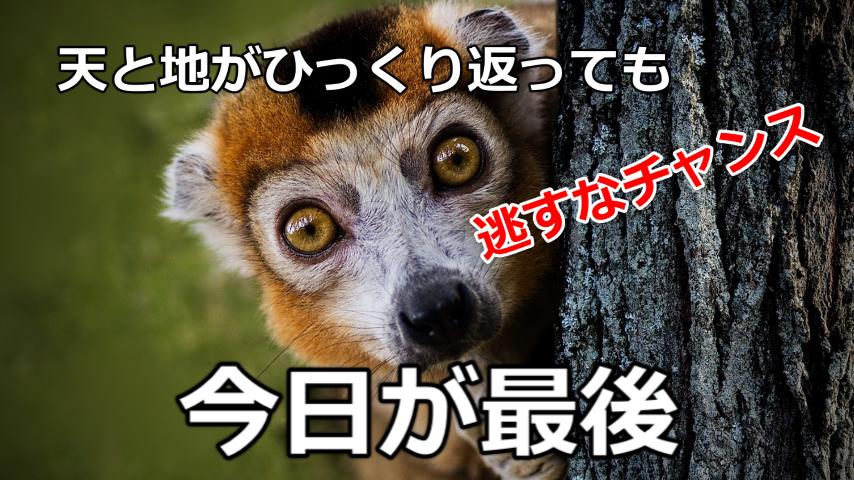 f:id:tenshiangel:20200630094611j:plain