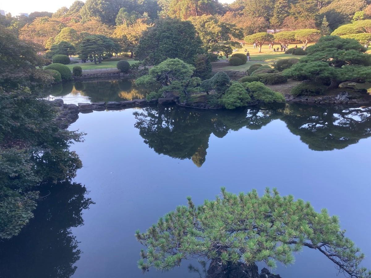 f:id:tenshinokuma:20201024150735j:plain