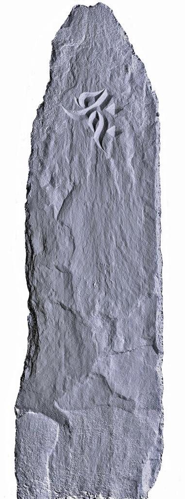 f:id:tentijin8:20181231110337j:plain