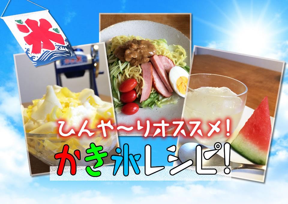 f:id:tentsu_media:20160721110243j:plain