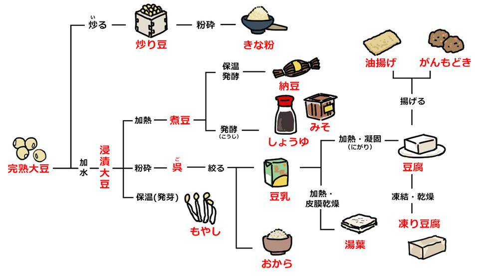 大豆加工品一覧表