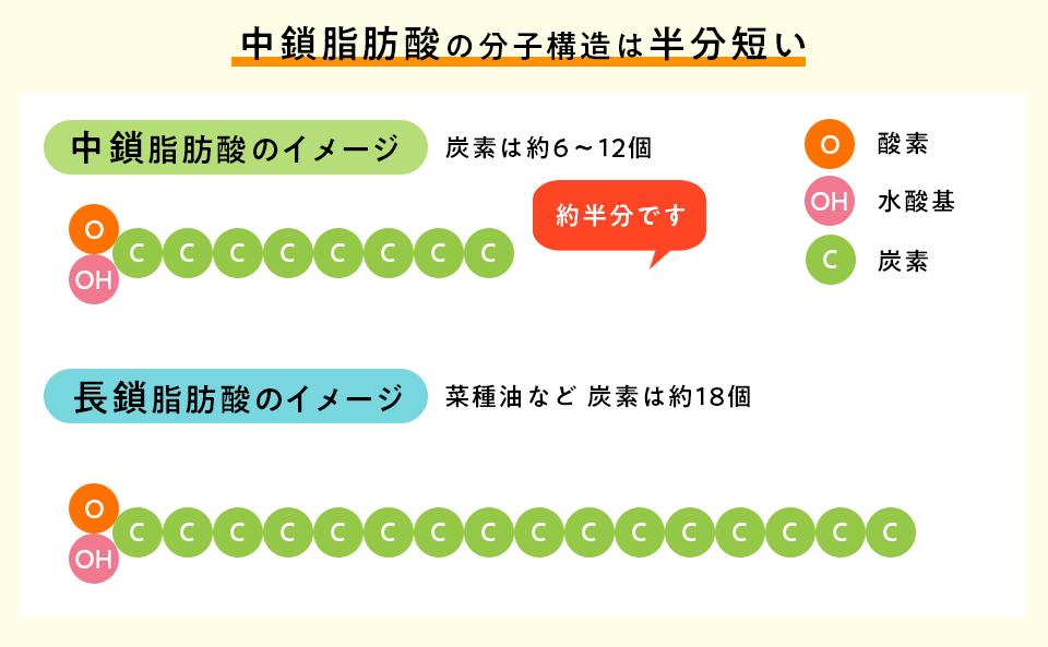 f:id:tentsu_media:20200214170643p:plain
