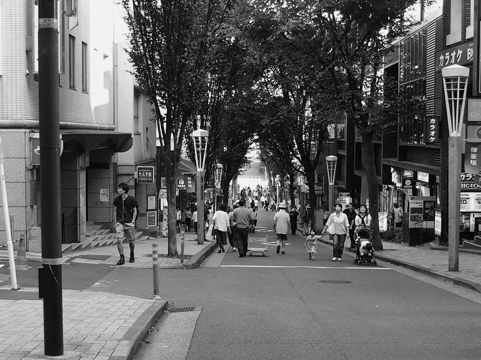f:id:tenuguisan:20161003214227j:plain