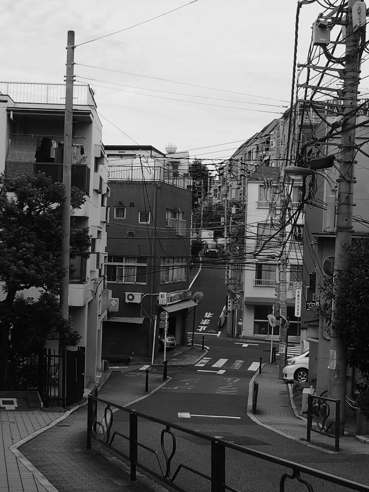 f:id:tenuguisan:20161005034604j:plain