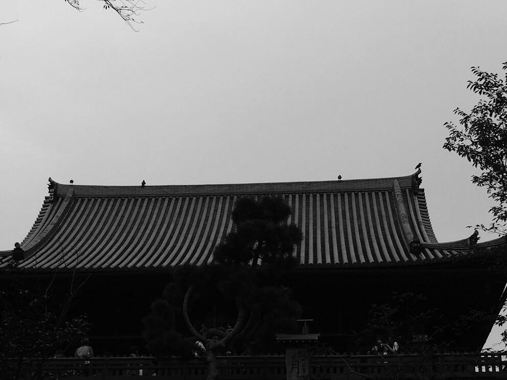 f:id:tenuguisan:20161022083004j:plain