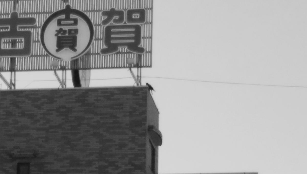 f:id:tenuguisan:20191204155416j:plain
