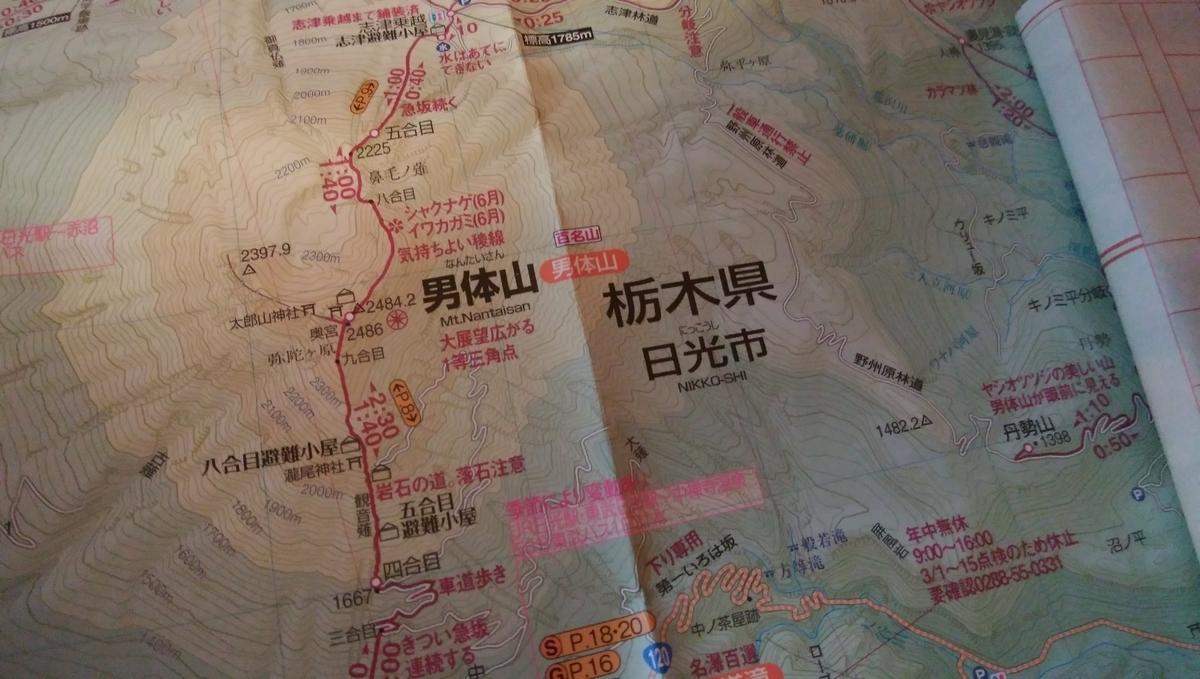 f:id:tenuguisan:20200721094107j:plain