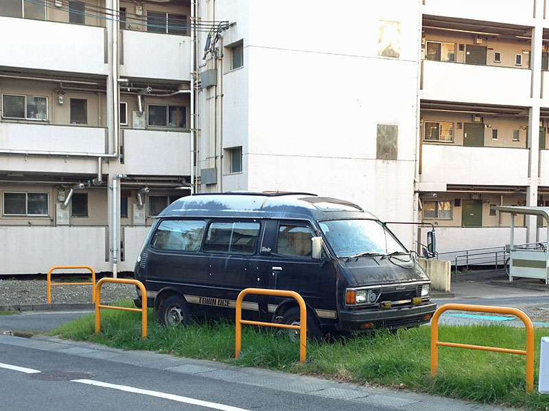 草ヒロタウンエース