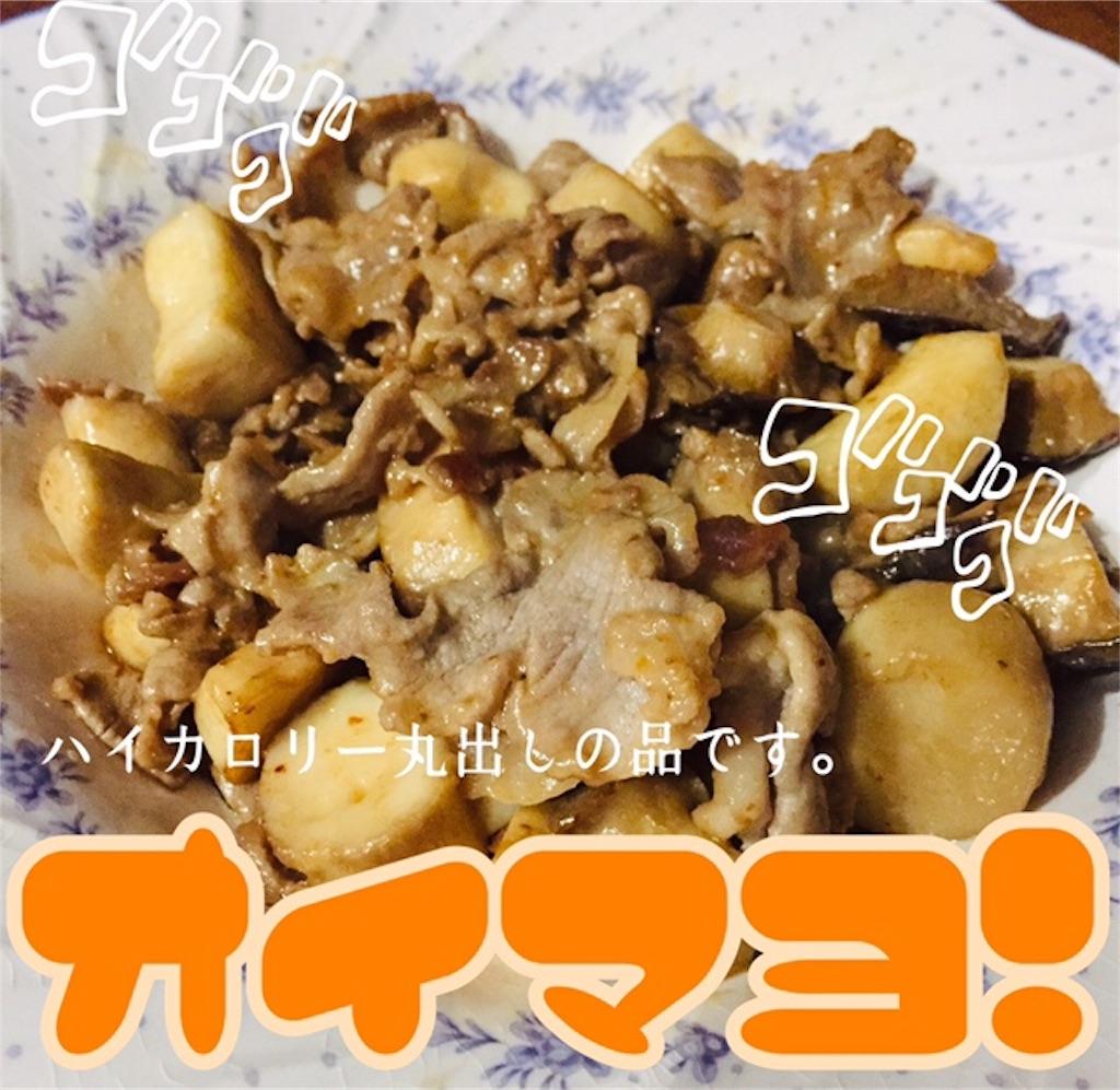 f:id:terako-m-0306:20190217221029j:image