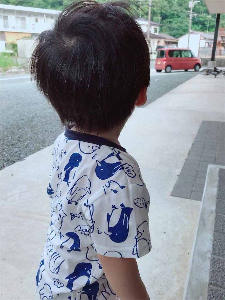 f:id:terako-m-0306:20190818173756j:image