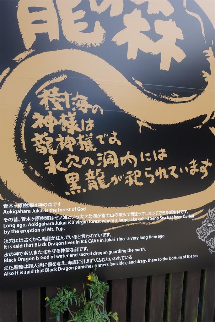 f:id:terako0322:20190910104841j:image
