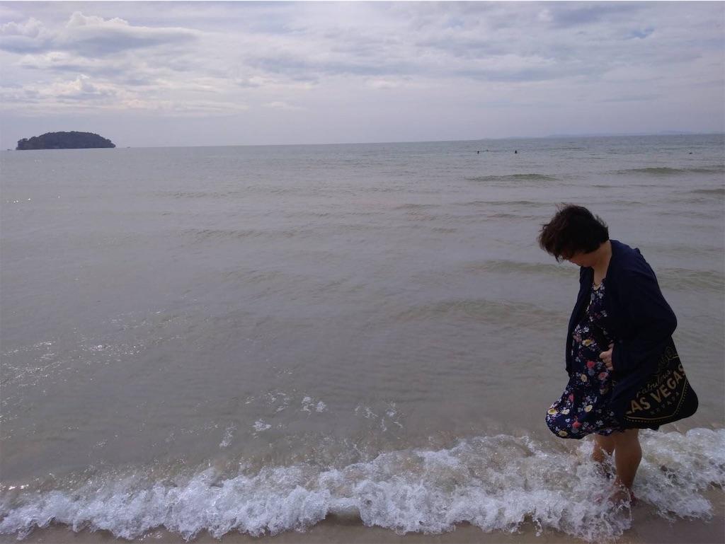 f:id:terakobuta:20190101185528j:image