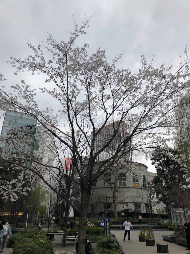 f:id:terakobuta:20190329002046j:image