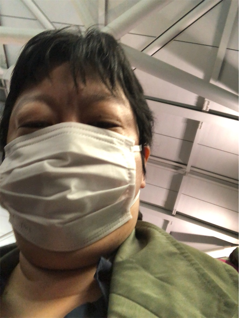 f:id:terakobuta:20200201083502j:image