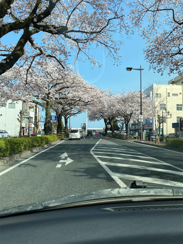 f:id:terakoyakun:20210402201511j:image